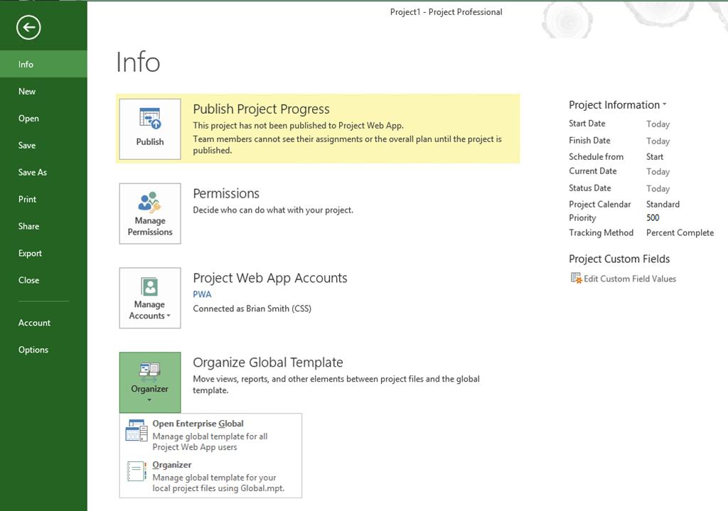 قسمت info در مایکروسافت پراجکت 2013